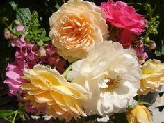 English Rose Bouquet