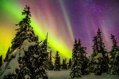 Aurora over Finnish Lapland, New Years Eve - Imgur