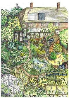 permaculture garden design (I love this and would also include just grass for the kids to play on)