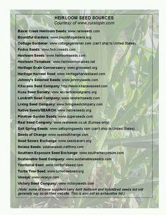 Non-GMO seed companies