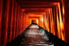 Thousands of gates - Fushimi Inari Taisha. Kyoto, Japan