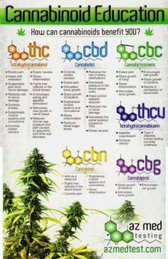 Organic Matters Publishing! #Cannabinoid #Education