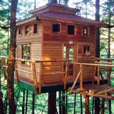 Tree House – Building Tips I wanted one of these so bad as a kid! Would make a nice guest house off site of my log cabin. Home Building Tips, Building A Pergola, Building A House, Build House, Building Ideas, Pergola Plans, Pergola Kits, Green Building, Tree House Plans