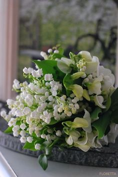 The French tradition of giving lily-of-the-valley flowers (Muguet-du-Bois) on May Day is believed to have begun on May 1st, 1561, when King Charles IX of France offered all the ladies of the Court a bouquet of lily-of-the-valley as a token of luck and prosperity for the coming year.