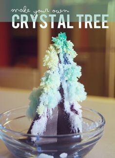 Science Grow your own ★ Crystal Tree ★ Preschool Science, Science Fair, Science For Kids, Science Activities, Science Projects, Science Ideas, Science Crafts, Teaching Science, Preschool Crafts
