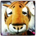 Le déguisement tigre Ratatam! Instagram