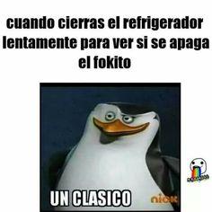 momos :v #detodo # De Todo # amreading # books # wattpad
