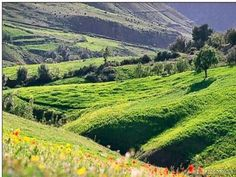 Beau paysage de la grande kabylie d'algérie
