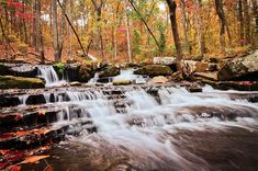 Collins Creek - See more of the best places to photograph in Arkansas at http://loadedlandscapes.com/ar-photography-locations/ Photo by Noel Pennington - https://www.flickr.com/photos/noelpenn/6328297609/