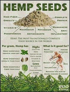 Hemp can be used for food, clothing, paper, medicine and SO many other things and people won't allow it because??