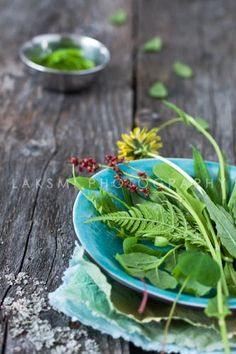 Wild Herb Salad. Common plantain, dandelion, spring pine buds, blueberry leaves and flowers, fireweed, chervil, sorrel and wood sorrel