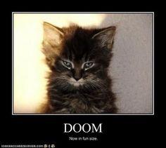 Friday Funnies- Doom | Kris F. Oliver