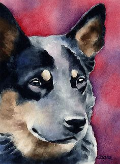 Australian #cattle dog #painting dog art print signed by artist dj #rogers w/coa, View more on the LINK: http://www.zeppy.io/product/gb/2/270887891455/