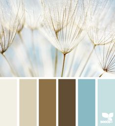 Wonderful site for colours...   LOVE this combination and might use it for the family room...