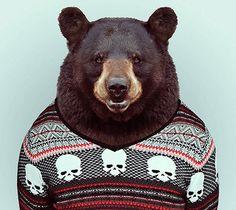 """Zoo Portraits"", animais estilosos."