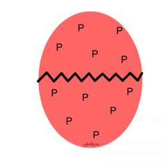 letterP