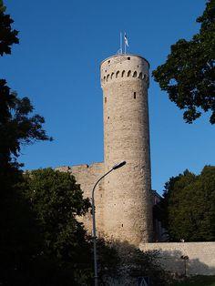 Pikk Hermann ja sinimustvalge Eesti lipp ◆Eesti - Vikipeedia http://et.wikipedia.org/wiki/Eesti #Estonia