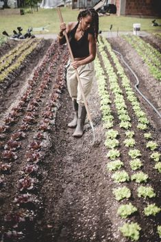 Amber Tamm: A Brooklyn Native Who Found The Land Through Trauma and Now Shares Her Experiences As A Black Farmer While Sharing The Importance of Regenerative Agriculture Rooted In Indigenous Wisdom — melaninASS.com