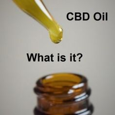 CBD or Cannabis Oil