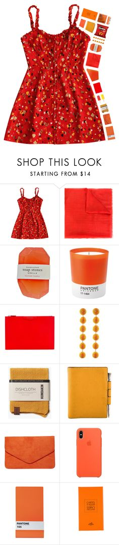 """Rorange (red + orange)"" by puhizaxox ❤ liked on Polyvore featuring Salvatore Ferragamo, Pantone, Givenchy, Été Swim, Rebecca de Ravenel, Hermès, Dorothy Perkins, Seletti and Comodynes"