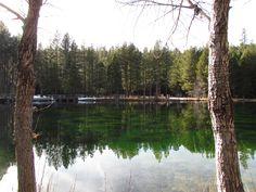 Pond at Wizard Falls Fish Hatchery near Camp Sherman, Oregon