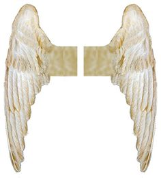 Printable Angel Wings: Can be used for paper dolls http://www.pinterest.com/whoknows/paper-dolls-p-4/