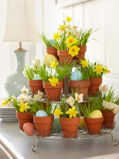 Splendor in the Grass- A mini-cupcake holder rises to the occasion when it's repurposed as a seasonal accent. Just insert pint-size pots plus blades of wheatgrass from a health-food store, alternating daffodils with dyed eggs.