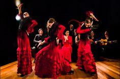 Los libros escritos por Fernando Quiñones, como De Cádiz y sus cantes (Barcelona, 1964), son clásicos para el estudio del flamenco en Cádiz.