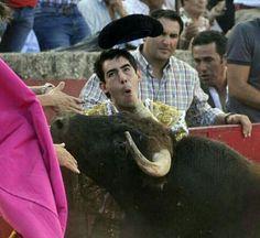 Olé, que arte tiene el toro!