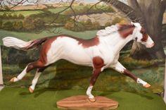 "Custom Breyer Horse ""War Drums"" L K | eBay"