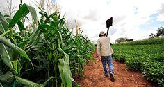 agrotikanew : Τιμωρούν τους Νέους Αγρότες του 2014 οι οποίοι χάν...