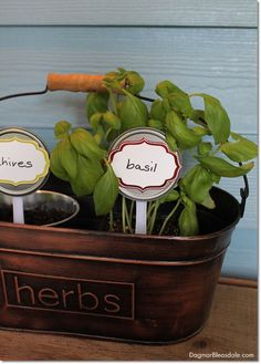 DIY plant markers ma