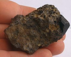 The Rock-Forming Minerals: Pyroxene (Augite)