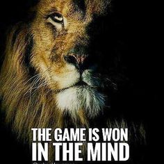 Développez l'esprit du Lion ! - Productiv' You!