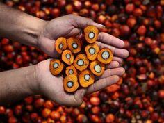El reto casi imposible de comer sin aceite de palma