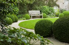circular lawn with buxus balls, pebbles and hellebors, hydrangeas...green & white my favourite!