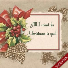 All i want for #Christmas is YOU! Made with #tweegram app >> https://itunes.apple.com/us/app/tweegram-text-message-quotes/id442452787?mt=8