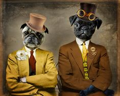 Pug Art Pug Print Steampunk Gold Yellow Animal Photography Pet Portrait Dog Print Gift for Dog Lover Print - Steampug
