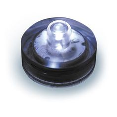 Tif   I want this for our pool.   Water Proof LED Lights -12 ct. - Choose Your Color