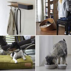 Bauhaus Inspired Dog Accessories from MiaCara