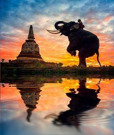 ❝ Ayutthaya, Ciudad en Tailandia (500px) ❞ ↪ Puedes verlo en: www.proZesa.com
