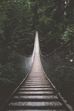 Lynn Canyon Suspension Bridge, Vancouver - Canada.  By Bronson Snelling