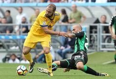 Gonzalo Higuain of Juventus competes for the ball with Paolo Cannavaro of US Sassuolo Calcio during the Serie A match between US Sassuolo and Juventus at Mapei Stadium - Citta' del Tricolore on September 17, 2017 in Reggio nell'Emilia, Italy.