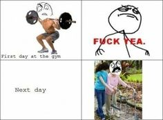 Funny pictures about First day at the gym. Oh, and cool pics about First day at the gym. Also, First day at the gym photos. Workout Memes, Gym Memes, Gym Humor, Workouts, Fitness Humor, Funny Workout, Funny Fitness, Fitness Fun, Fitness Quotes