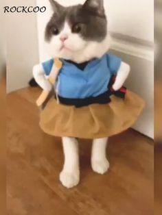 Funny Pet Cat Costume Clothes Dress Apparel Policeman Cosplay I didn't know whether gown designs Funny Cute Cats, Funny Animal Jokes, Cute Funny Baby Videos, Cute Baby Cats, Cute Cat Gif, Cute Animal Videos, Cute Little Animals, Funny Animal Videos, Cute Funny Animals