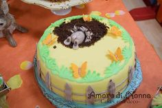 Peter Rabbit cake, birthday party ideas, Easter bunny cake