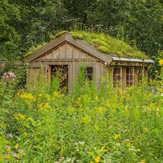 This chicken coop's green roof is covered with drought-tolerant plants like sedums, alliums, grasses and campanulas. More tips from this Wisconsin garden: http://www.midwestliving.com/garden/featured-gardens/garden-tour-heart-and-soil?page=4