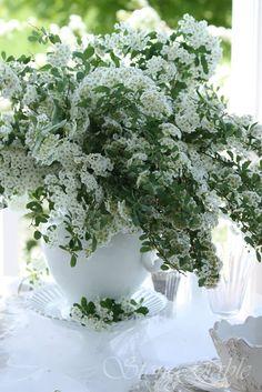 Tablescape |Flowers |White|Bridal