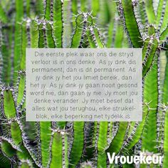 Afrikaans Quotes, Daily Bread, Inspirational Quotes, Faith, Christmas Ornaments, Holiday Decor, Words, Groot, Management