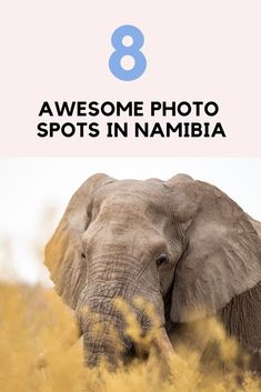 The best photography locations in Namibia